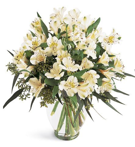 White Sympathy Vase Arrangement