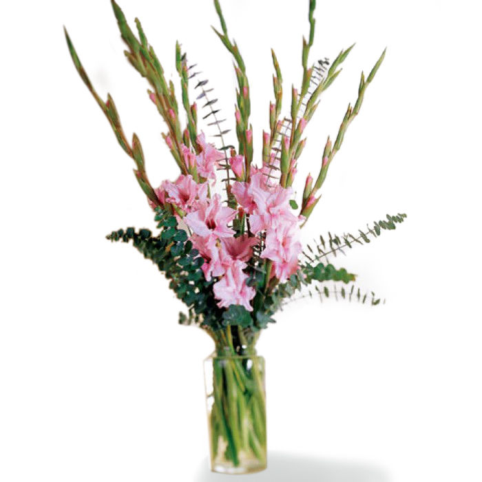 Exotic Gladiolus Bouquet